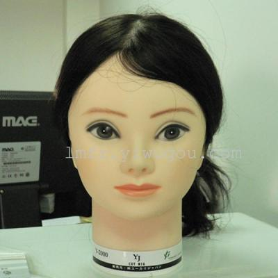 Manufacturers supplying high quality plastic model head die mannequin head