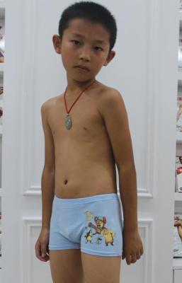 Baolei boxed boyshort quality fabric of bamboo fiber boys healthy and comfortable breathable skin-8393