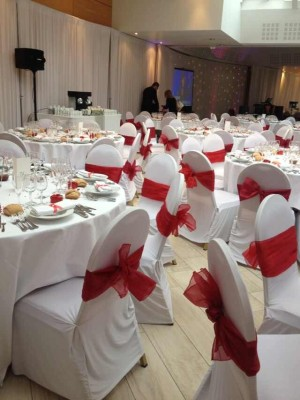 Hotel supplies hospitality supplies stretch Chair cover wedding Chair cover wedding chair covers/thickening increases