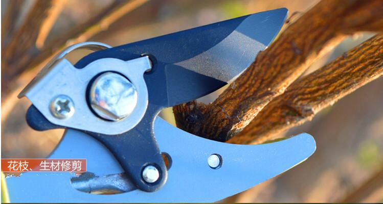 高枝剪 果树修枝剪 园林园艺剪刀 摘果器 采摘器