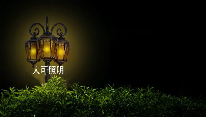 欧式仿古公园花园道路小区别墅庭院灯三头路灯0159