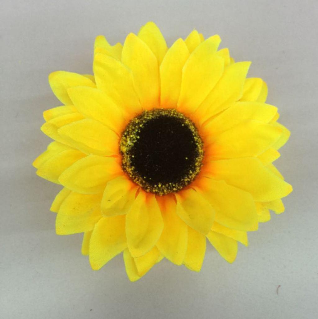 单只太阳花
