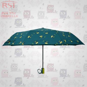 [rst3534a] Owl paraguas paraguas paraguas el 30 por ciento de las explosiones