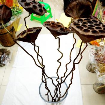 Lotus seed stem crafts Lotus single shower flower accessories