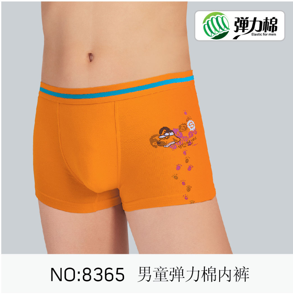 A pair of comfortable boys' briefs, boxers or boxer briefs is essential for your son's comfort throughout the day. Check out a selection of little boy's underwear with fun designs and cartoon characters and options of athletic boxer briefs perfect for wearing under boys' activewear clothing.