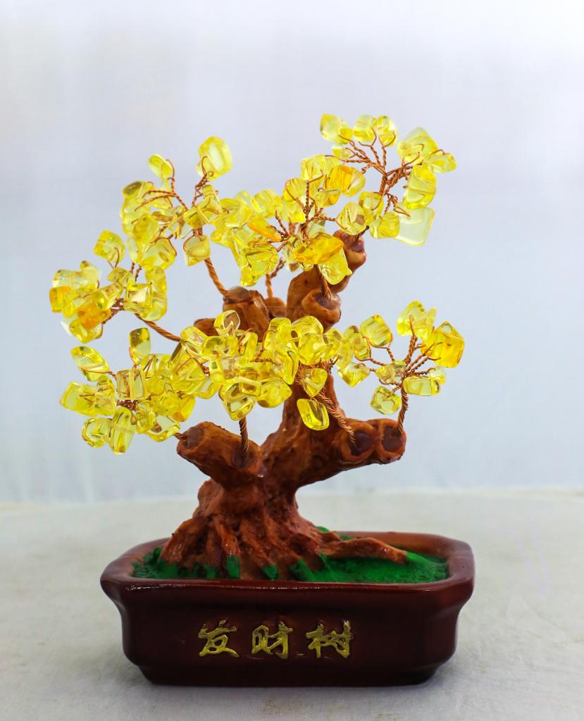 招财树.水晶树.发财树