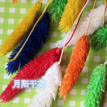 Dried hay crafts decorative accessories flower bouquet Sapphire