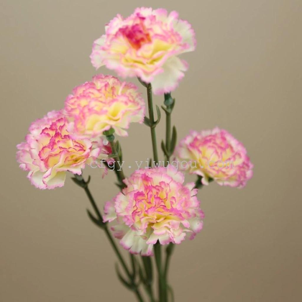 Supply Carnation Silk Flower Decorations Simulation Flower