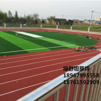Artificial turf, lawn, lawn, lawn, lawn, lawn, lawn, lawn, carpet, carpet, outdoor