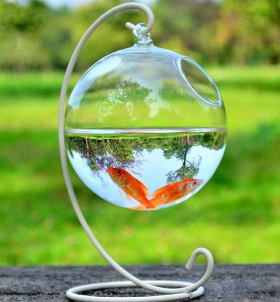 迷你鱼缸小型透明玻璃金鱼缸 圆形创意水族箱 生态桌面水培缸