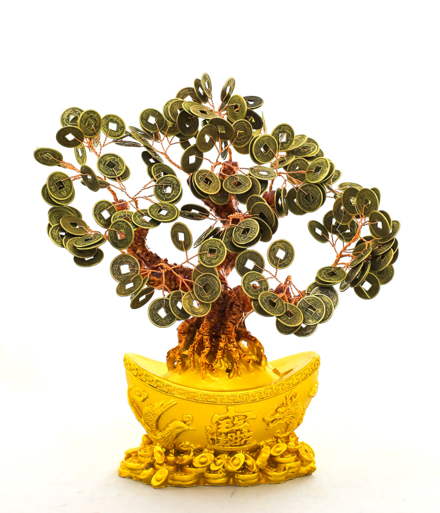 摇钱树,招财树,发财树