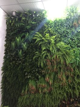 2015新款 植物墙 热销产品