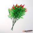 Flower plants flower flowers fruit Zhaocai pepper fruit bouquet
