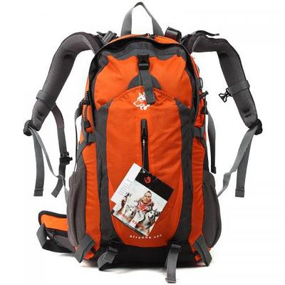 Camping Backpack with backpack backpack and tear resistant nylon spot