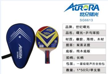 Table tennis racket SG6613/SG6617