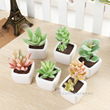 High simulation succulents flocking environmental ceramic pot factory direct support mixed batch
