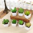 The simulation of ceramic pot plant Mini bonsai plants