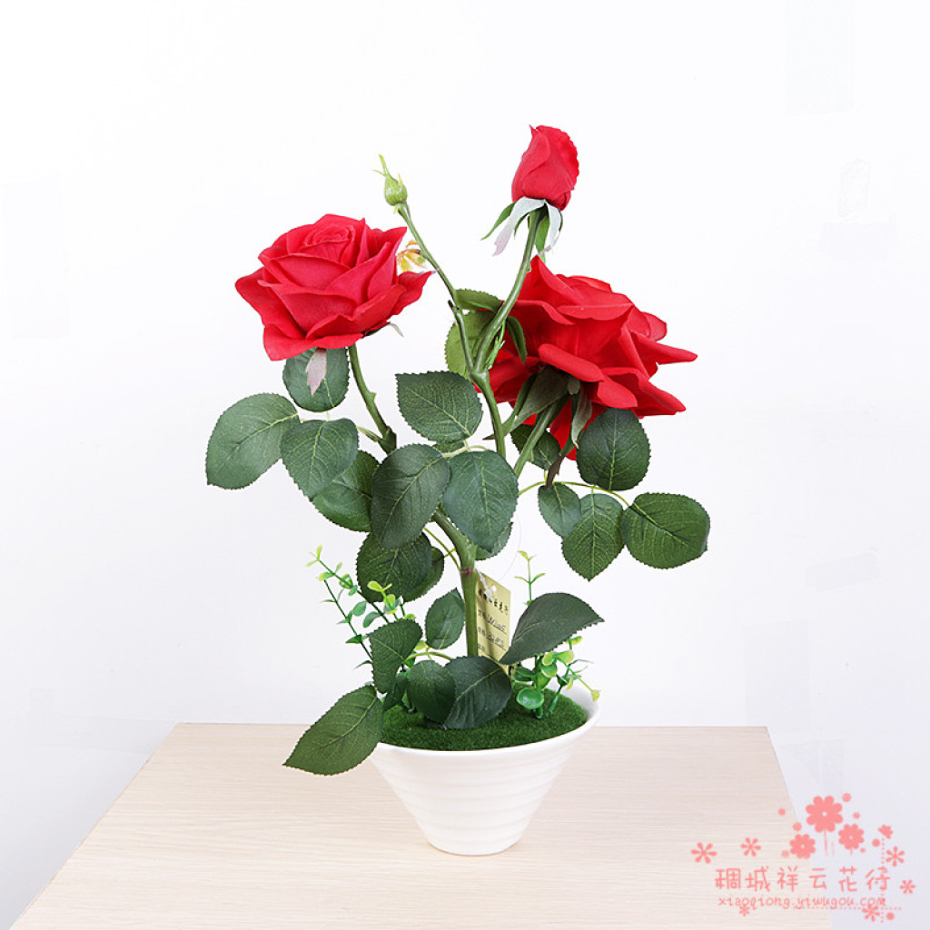 Supply The Red Rose Flower Pot Flowers Table Decoration Decoration