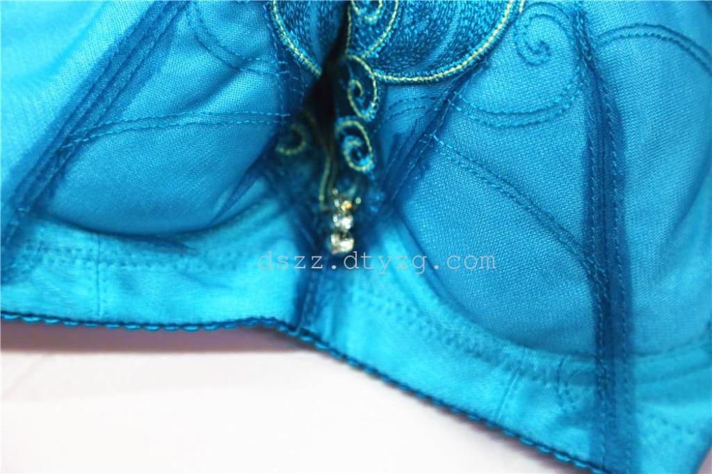 蕾丝刺绣 超薄型女士文胸 8312