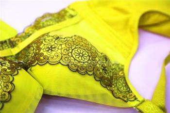 吉娜 蕾丝纺纱 精品女士内衣1809