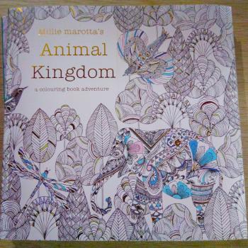 英文版 动物王国 秘密花园 奇幻梦境 填色本 涂色书