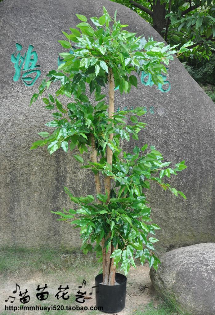 5层造型榕树 仿真树 仿真植物仿真植物室内园艺热带