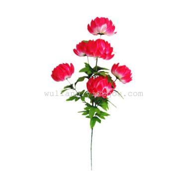 7 Baltic Chrysanthemum