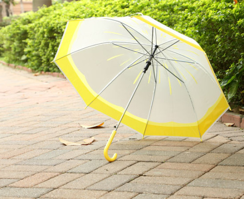 Cartoon long handle umbrella student umbrella transparent umbrella jelly color umbrella