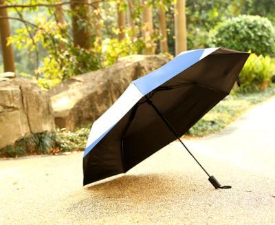 Umbrella umbrella, umbrella umbrella, umbrella, umbrella, umbrella, umbrella, umbrella, umbrella