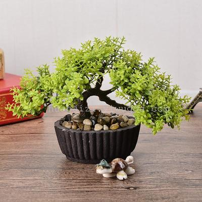 Pisifera posture simulation flower set Mini bonsai flowers retro stone pot welcoming pine