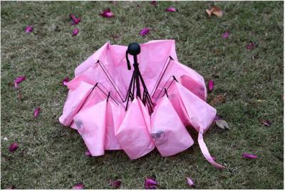 Cartoon folding umbrella umbrella student umbrella color umbrella