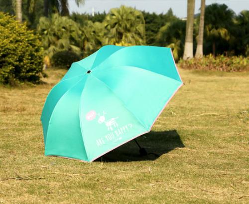 Umbrella umbrella umbrella umbrella umbrella umbrella umbrella umbrella umbrella