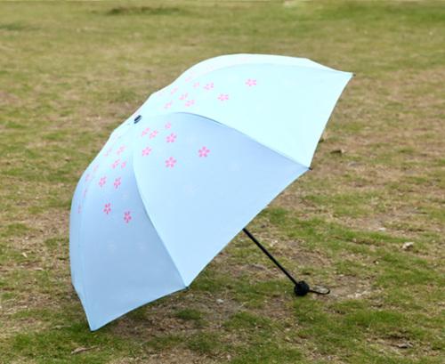 Cartoon umbrella umbrella student umbrella folding umbrella Cherry Blossom umbrella