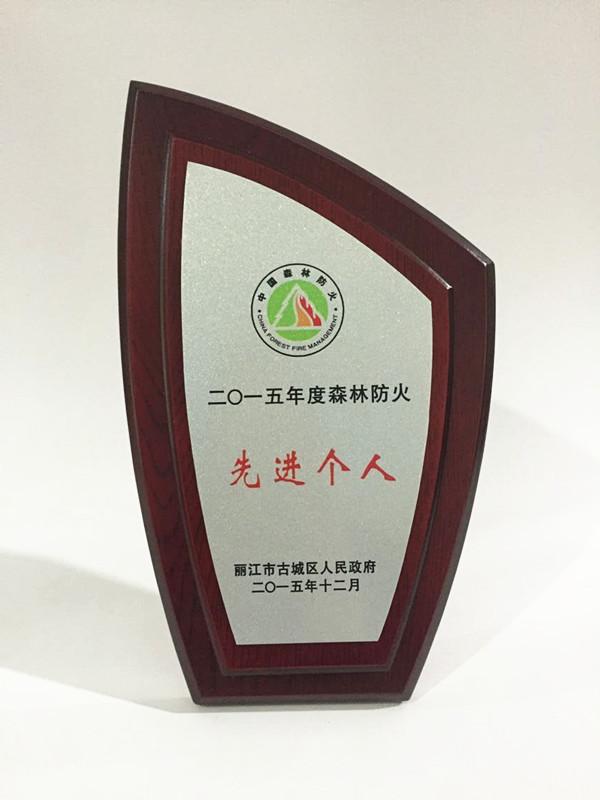 供应木质授权牌 高档木质奖牌 高档金属工艺品 精密铸件