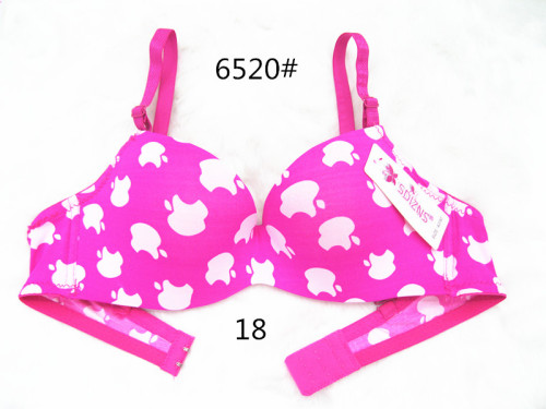 The new printing factory direct foreign trade bra exports South American fashion underwear girls small cup bra