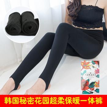 With velvet leggings and women wear thick pantyhose Korea secret garden pressure stovepipe socks