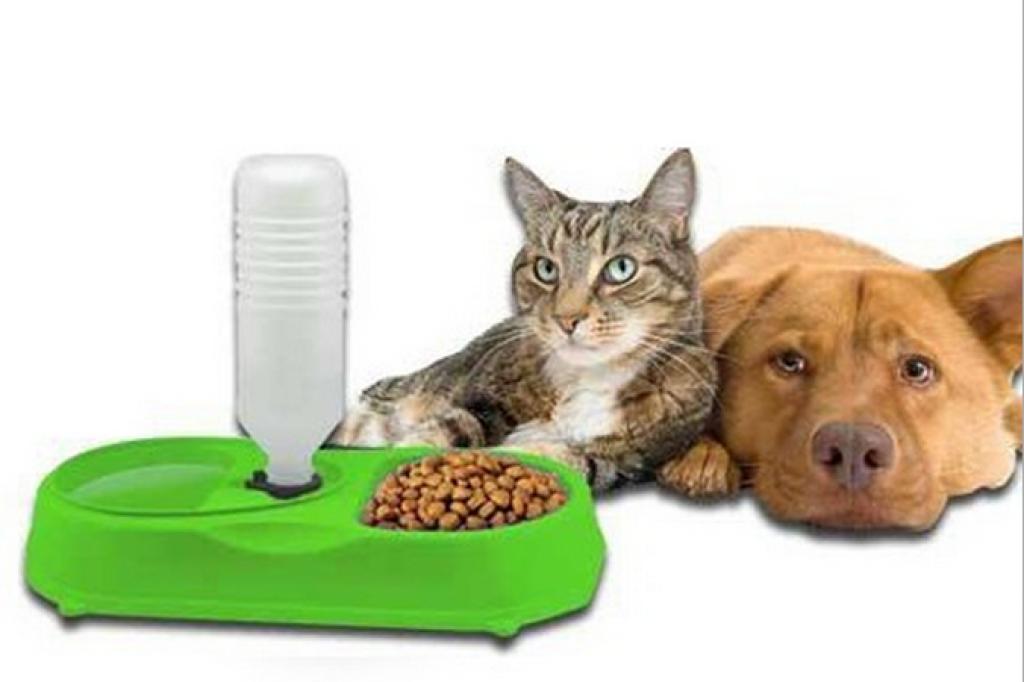 狗狗喂食器宠物饮水器 二合一宠物必备食物碗petfeeder