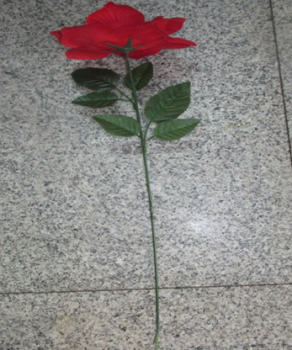 Single rose red flannel flower decoration on Valentine's day the Qixi Festival give high-end