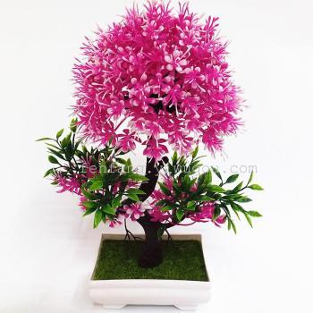 The small pot Home Furnishing decoration Mini bonsai crafts gifts