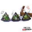 Manufacturers selling exquisite plant simulation Mini pot plant simulation technology high bonsai ornaments