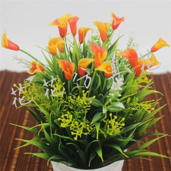 Fresh flower flower flower orchid simulation