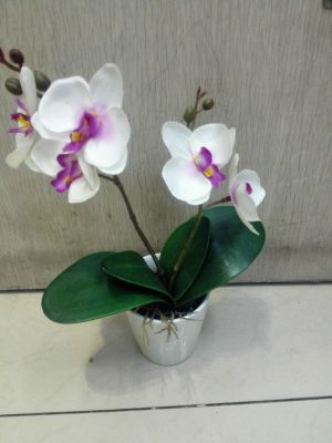 Simulation of ceramic cups 2 small plastic fork Phalaenopsis potted artificial flowers