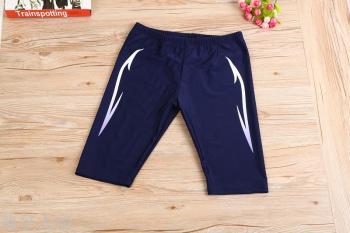 Spring men's pants five color professional adult men's swimming trunks swimming beach shorts wholesale nylon