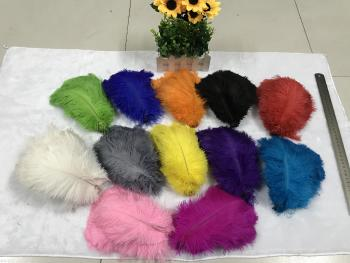 The sun feather manufacturers selling 12 natural color ostrich hair 15-20CM