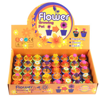 Three - dimensional home plant flowers magic inflatable plant flower pots small toys