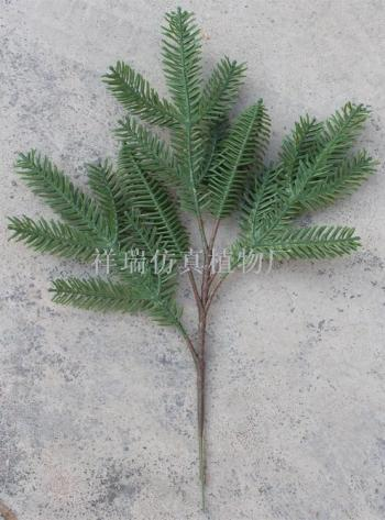 Simulation plant pentachine minjiang fir spruce leaf spruce tree of China red and white spruce wholesale