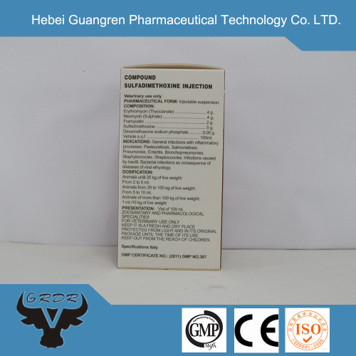 GMP gentamicin injection