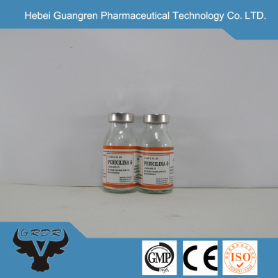 GMP penicillin G potassium powder for injection