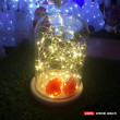 Led lamp copper lamp string flashing lights in the lamp decorative lights battery waterproof copper light