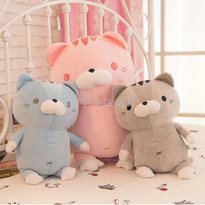 Creative new rice balls cute big face cat software slug cat pillow cat down plush cotton plush toy doll